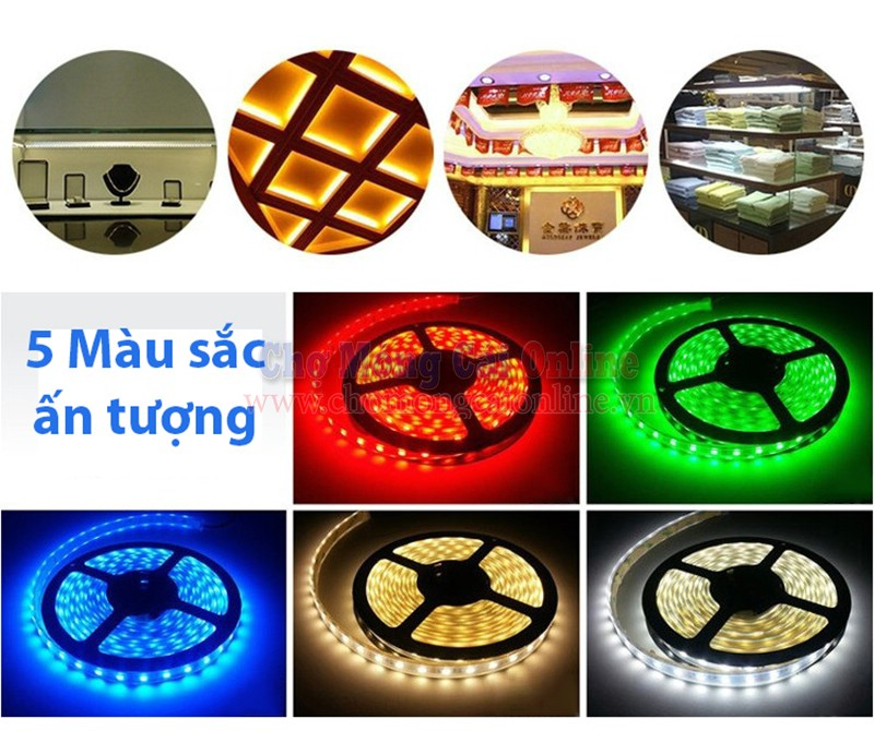 Den-LED-day-dan-3528-cuon-5m2