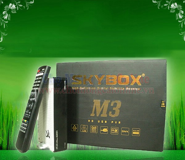 dau-thu-ky-thuat-so-skybox-m3-hd-dvb-s-30.jpg