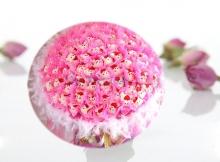 Hoa gấu bông - Bó tròn 99 bông